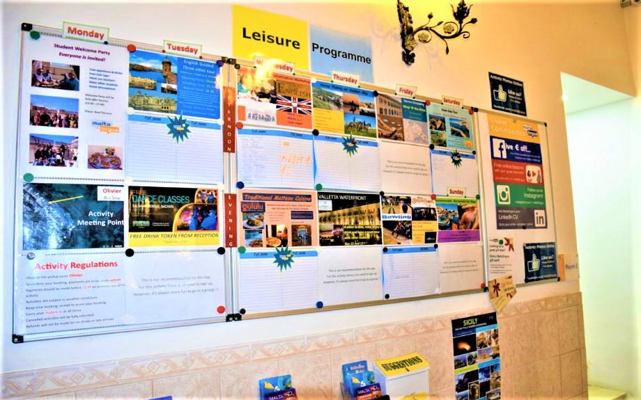 Malta Linguaのアクティビティ連絡ボード