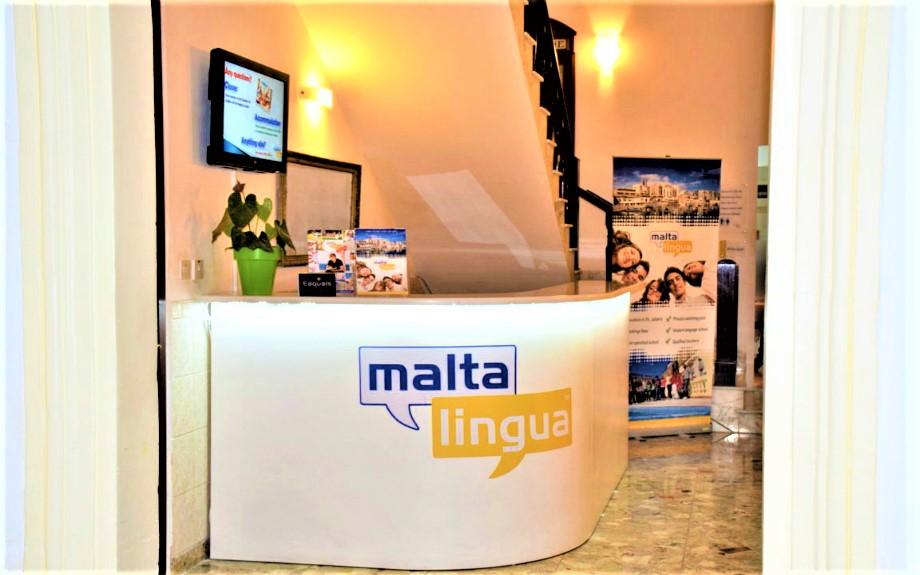 Malta Linguaの受付