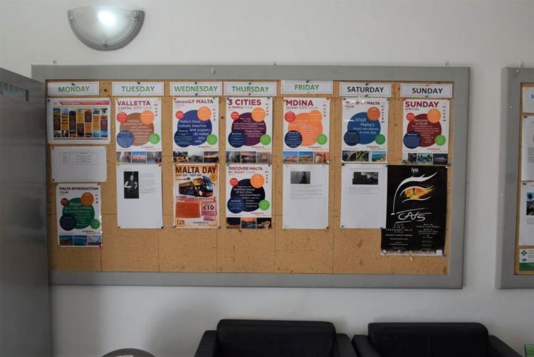 マルタ親子留学人気校GV Maltaのアクティビティ掲示板