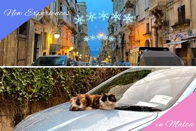 マルタの生活
